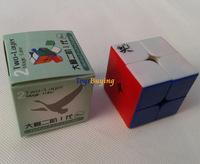 wholesale 10pcs/lot 4.6cm Dayan zhanchi 2x2 Speed Cube Free Shipping