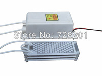 LF-22021G/AC220v 21g ,ozone generator,ceramic plate*3+power supply,air source,air purifier,ozone generator accessories