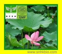 1000g[Hot Lose weight] Lotus Leaf Extract Powder Nuciferine   2%