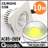 Wholesale 2PCS/Lot 10W COB LED Ceiling Light LED Bright Indoor Downlight LED Spot Lamps AC85V-265V LED Ceiling Light