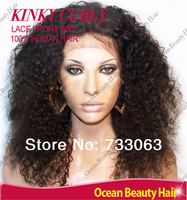 Malaysian Afro Kinky Curly Wigs Human Hair Natural Hairline Virgin Glueless Lace Front Wigs For African Americans Free Shipping