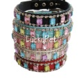 pet collar and leash, pet collars charm  dog collar leash 5 colors