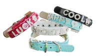Free shipping DIY a charming personalized pet collar with rhinestone letters