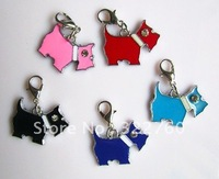 more color dog tags toys pet product free shipping