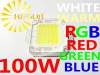 FREE SHIPPING 100W 45MIL 10000-11000LM LED Bulb SMD Lamp Light High Power White / Warm White LED