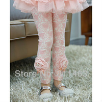Factory directly sell 5pcs/lot / girl fashion 3D flower leggings / kids spring-autumn tights/ wholesale