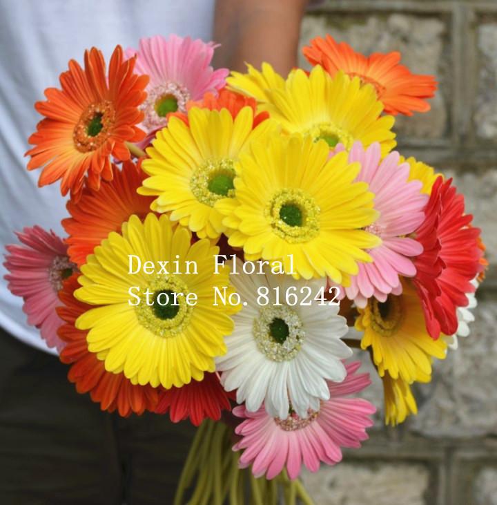 Orange Gerbera Daisy Wedding Bouquet