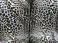 Silk Stretch Satin 16m/m/Width-108cm/94% pure silk fabric +6% Lycra/Fashion leopard dress fabrics/3 meters/lot