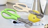 Stainless steel kitchen scissors & Quail egg scissors for kitchen, quail egg cutter, cigar cutter , stainless steel scissors
