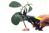 Pruning shears , good helper for gardening, Carbon steel balde+skidproof handle, pruning scissors, gardening tools