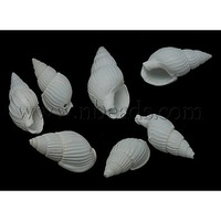 Stock Deals Spiral Shell Beads,  Dyed,  White,  Size: about 19~21mm long,  10~11mm wide,  8~9mm thick,  hole: 1mm