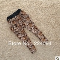 Free shipping 2013new spring and summer children clothes baby girl's leopard pants Leggings Haren pants casual pants legging