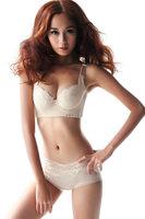 2014 Intimates Women Bra set Special Price Sale Push Up Underwear Plus Size B C D E F Cup Large Size Bra Brief Set T301