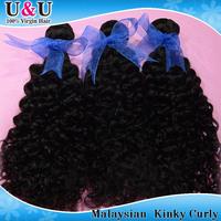 Rosa Hair Products Malaysian Curly Virgin Hair 100%Unprocessed Mocha Kinky Human Hair  cheaper than Queen Star Hair Products