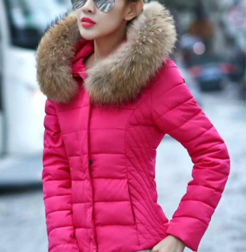 Coat Jacket Wome