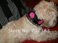 Free shipping dhl 20pcs/lot  fashion lace pet products