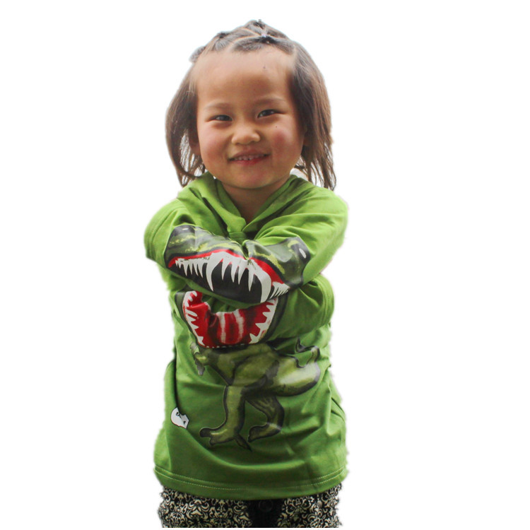 Christmas hoodies hot sale dinosaur 3t/4t/5t/6/7/8/9 2013 new children's t shirts for boys children clothing free shipping(China (Mainland))