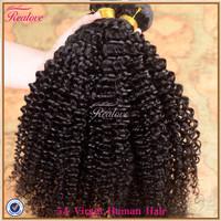 """malaysian virgin hair extension kinky curly 2pc 8""""-30"""" afro kinky curly hair weaves kinky curly virgin hair Realove Hair on Sale"""