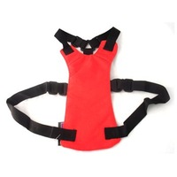 Bulk Wholesale 10pcs/lot Black/Blue/Red Dog Harnesses Collars Car Seat Safety Belt Seatbelt Dog Cat Pet Free Drop Shipping
