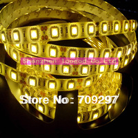 DC 24V  5m 300LED white/warm white/blue/green/red/RGB IP65 waterproof SMD 5050 LED strip light 60LEDs/ m T-889 + free shipping