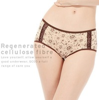 Bamboo Fibre Transparent Healthy Briefs Women Lace Sexy Seamless Panties Female Underwear Ladies Pink White Quality Knickers