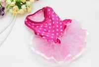 CUTE ROSE Polka Dot LACE Small Pet Dog Cat puppyClothes dress size XS S M L