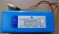 Custom 25.6V 12Ah (307.2 Wh) Electric Vehicle LiFePO4 Battery pack