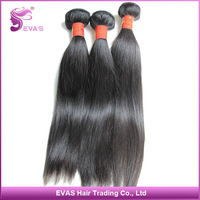 EVAS Hair Products 1 bundle Hot Sale Sample Order 100% Unprocessed Virgin Malaysian Straight Hair Extensions with DHL Free Ship