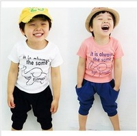 boys clothes 2013 summer new cotton bear sets for girls sets for girls short sleeves cartoon lovely children clothing two-piece